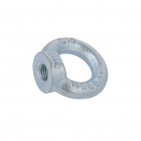 D-NZU16 Lifting eye nut eye M16