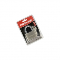PRE-24860 Padlock Kind shackle