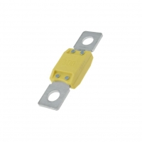 MEGAVAL-100A Fuse fuse automotive