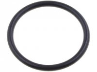 10x LP-53001020 O-ring gasket Body